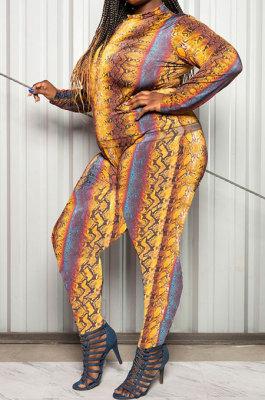 Long Sleeve Printing Jacket Long Pants Autumn Winter Two-Piece YF1295