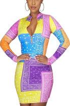 Casual Womenswear Positioning Printing Dress SXS6029