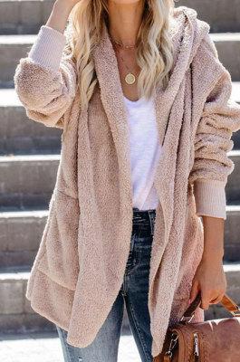 Woolen Cloth Casual Long Sleeve Zipper Loose Hooded Coat ZNN5099
