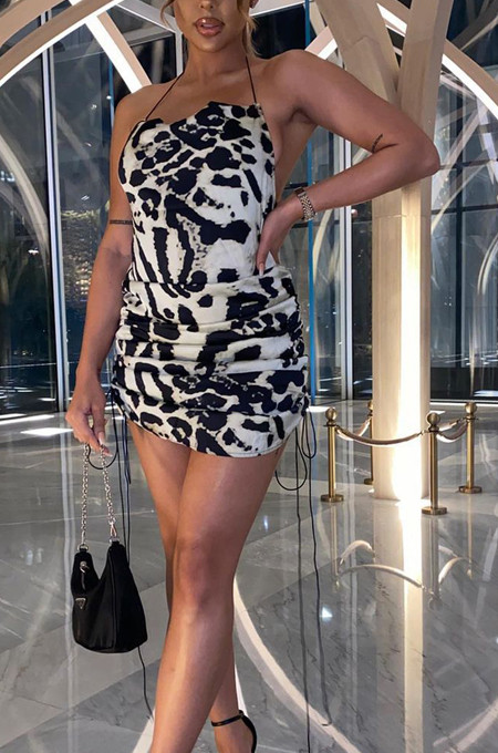 Euramerican Women Milk Print Sleeveless Sling Mini Dress JG019