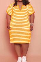 Euramerican Women Stripe V Neck Plus Mini Dress FA7229