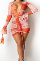 Sexy Tight V Neck Print Flared Long Sleeve Shirred Detail Dress SY8814