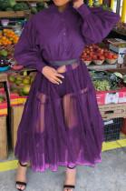 Pruple Euramerican Night Blub Net Yarn Spliced Long Sleeve Dress L0315-5
