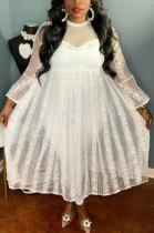 White Pure Color Lace Mesh Spaghetti High Waist Long Sleeve Midi Dress YF9127-1