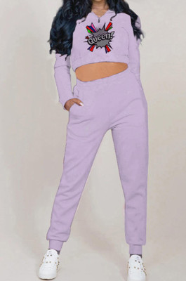 Light Purple Autumn And Winter Velvet Long Sleeve Stand Collar Zipper Fleece Carrot Pants Casual Sport Sets YMT6224-1