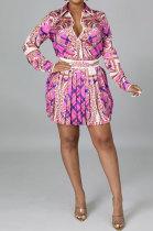 Pink Euramerican Long Sleeve Shirt Ruffle Skirts Sets YF9196-1