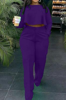 Purple Fashion Wholesale Long Sleeve Irregularity Tops Wide Leg Pants Slim Fitting Sets D8454-5