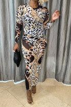 Leopard Women Printing Mesh Spaghetti Long Sleeve Round Collar Long Dress RB3203-3