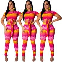 Women Short Sleeves Crop Top Printing Slinky Pants E8305