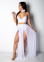 Sexy Camisole Chiffon Skirt Two-Piece Set ZSG0182