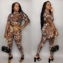 Leopard print casual sexy two-piece suit LSN716
