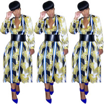 Long Sleeve Women Printed Button Down Leisure Dress FA7057