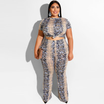 Serpentine printed tight T-shirt, straight trousers two-piece suit 19269
