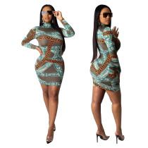 Fashion Printed Round Neck Long Sleeves Bodycon Mini Dress YF8580