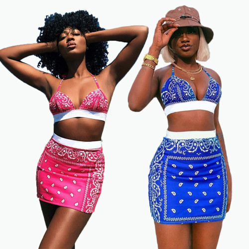 Two-piece sexy swimsuit short skirt two-piece printed short skirt FFD1116
