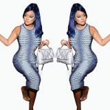 Sexy printed dress plus size women's clothing FFD1120