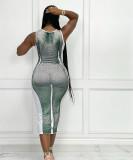 Women's clothing autumn new style bag hip skirt sexy body print slim dress FFD1135