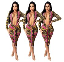 Ladies Fashion Tie Dye Print Sexy Deep V-Neck Long Sleeve Dress Z60083