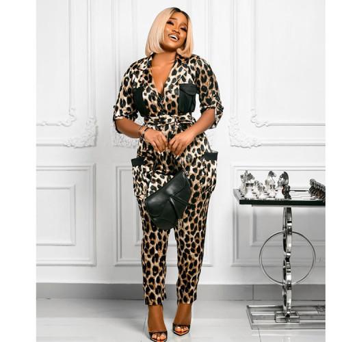 Leopard print shirt collar jumpsuit temperament commuter T-shirt half-length black cotton women's clothing SZ6034