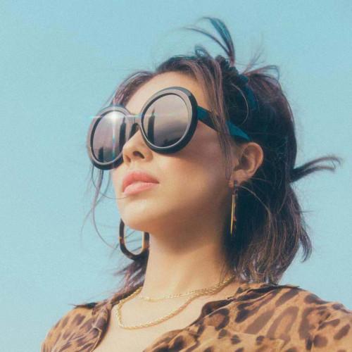 Large Round Women Sun glasses Oversized Shades Sunglasses