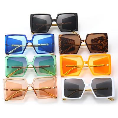 Big Frame Oversized Square Shades Sunglasses