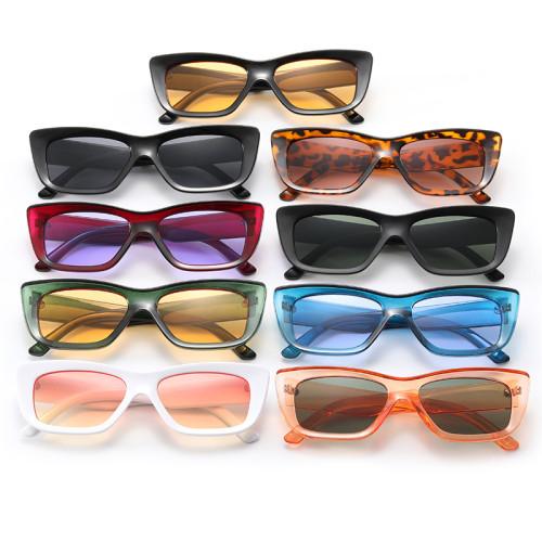 Retro Plastic Small Rectangle Sunglasses