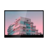 12.5  portable monitor