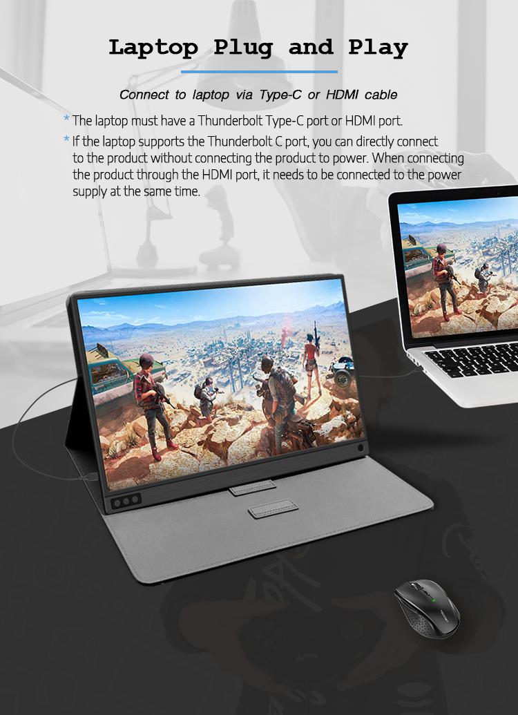 portable monitor 1080p
