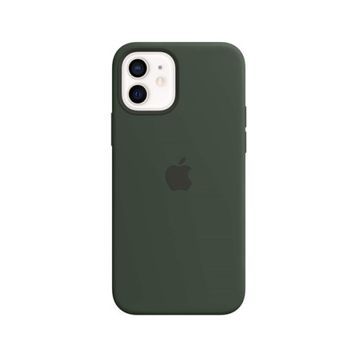 Silicone Case with MagSafe (for iPhone 12 | 12 Pro) - Cyprus Green