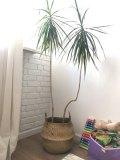 Handmade Foldable Bamboo Wicker Basket Flower Pot