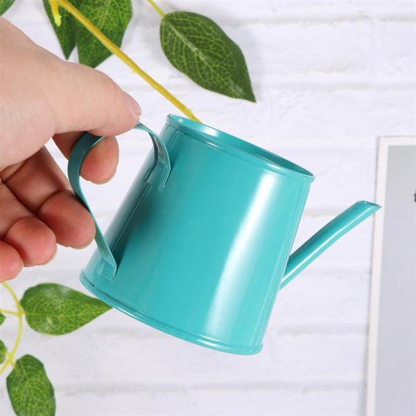 Iron Spray Mini Kettle Garden Watering Can