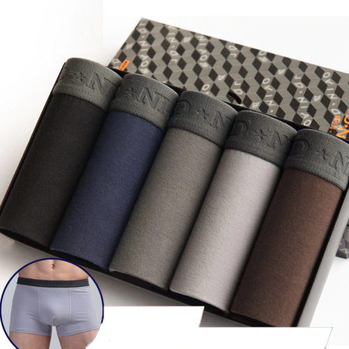 5Pcs Comfortable Breathable Men's Panties