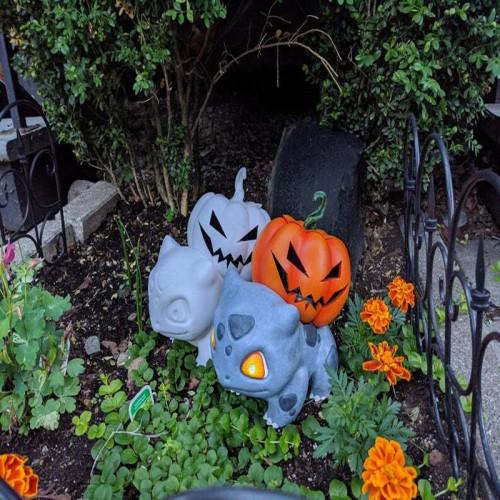 Halloween Pumpkin-Pokemon