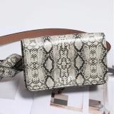 Women Snake Pattern Square Waist Bag Casual Bag