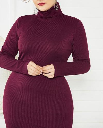Long Sleeve Stretch Slim Turtleneck Sweater Knit Dress