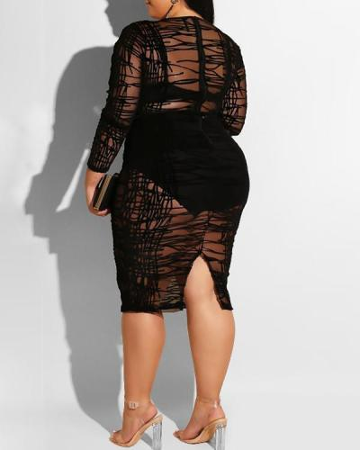 Long Sleeve Flocking Lace Sheer Sexy Dress