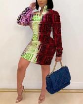 Daily Print O Neck Pencil Skirt Dress