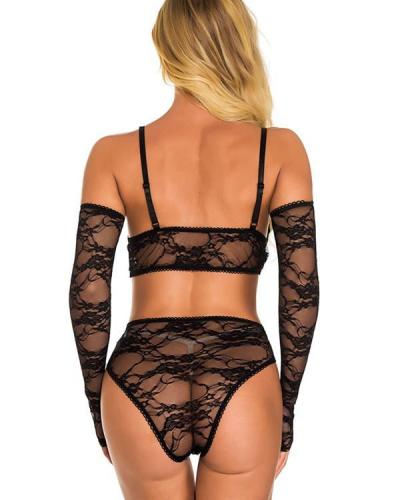 Sheer Beauty Lace Bra Set Sexy Lingerie