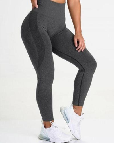 Gray Yoga Legging Knit Seamless High Rise Female