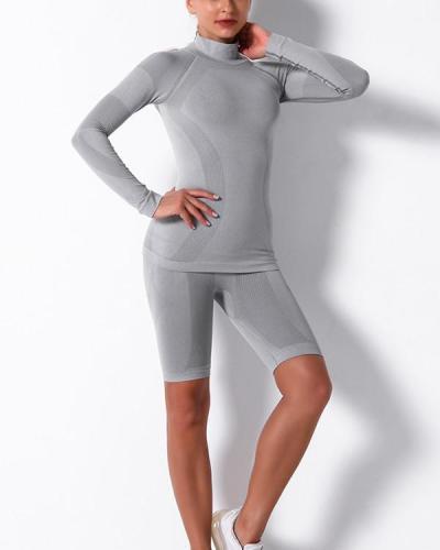 Gym Mesh Breathable Seamless long Sleeve & Shorts Sets