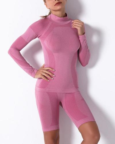 Gym Mesh Breathable Seamless long Sleeve & Shorts Sets