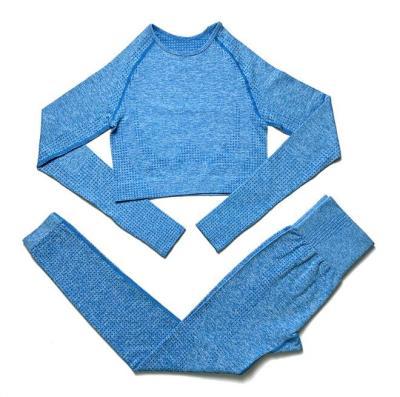 Seamless Yoga Set Two Piece long Sleeve Top & Leggings