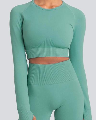Long Sleeve Seamless Suit Sports Yoga Set 2 Piece