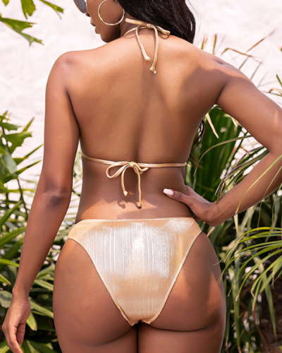 Temperament Gold Embroidered Swimsuit