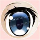 #45 eyeball of Aotume doll