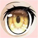 #77 eyeball of Aotume doll