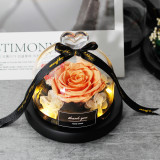 (Free Shipping ) Exclusive Rose In Glass Dome With Lights Eternal Real Rose Mother's Day Gift