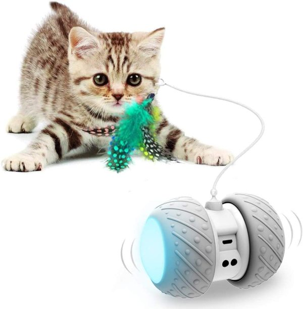 Automatic Cat Teaser with led wheel Rechargable