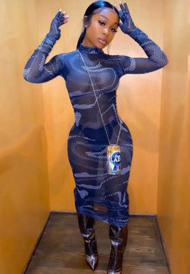 Transparent Mesh Club Dresses