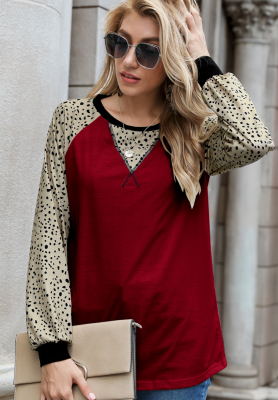 Leopard Sleeve Loose Top